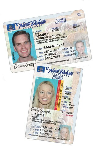 Real and fake North Dakota driver's licenses for sale